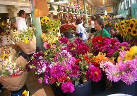 pike flowers
